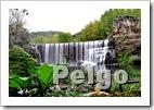pozo de El Pelgo