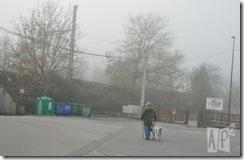 Día de perros (1)